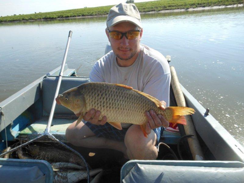 рыбалка на волге июль 2016