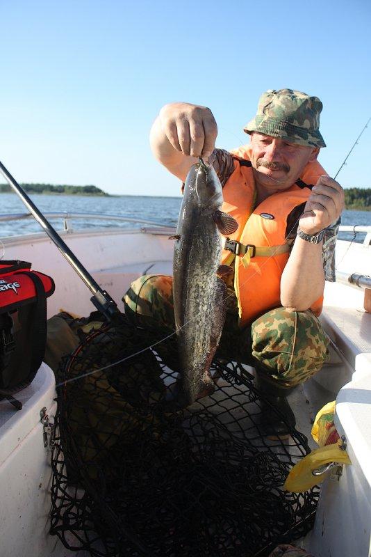 база противье рыбалка