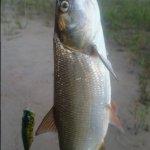 Рыбалка на Угличском