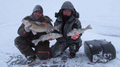 прогноз рыбалки брейтово