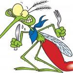 Как защититься от мошки и комара летом.