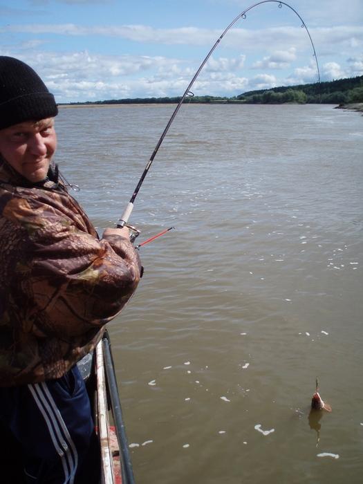 северный рыболовный сайт