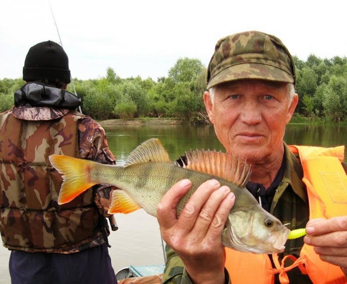 на просится на рыбалку