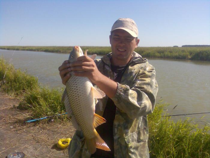 фото рыбалка в новосибирской области