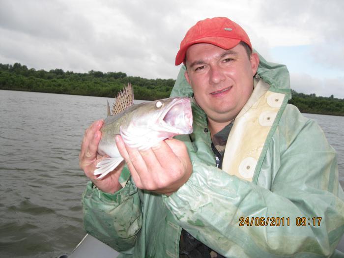 главный рыболовный сайт