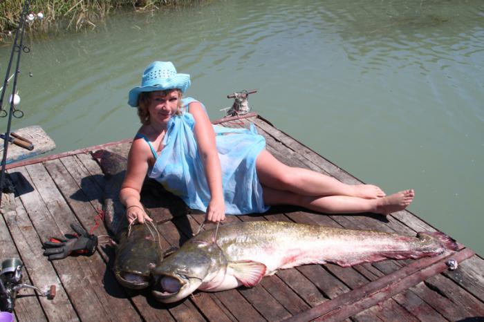 ловля сома в ставропольском крае места