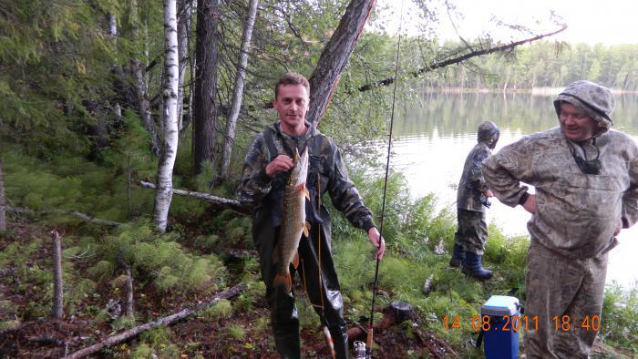охота и рыбалка дикая