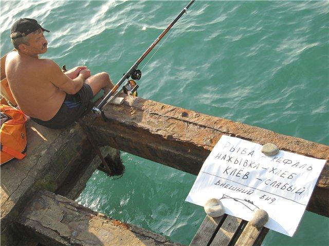 как поймать рыбу в сочи
