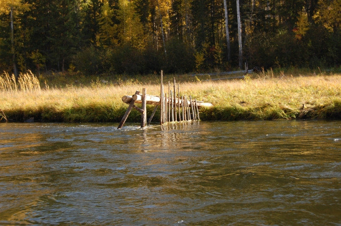 как ловить рыбу мордами в реке