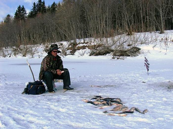 ловля чебака на севере