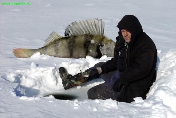 где лучше ловит рыба в челябинской области