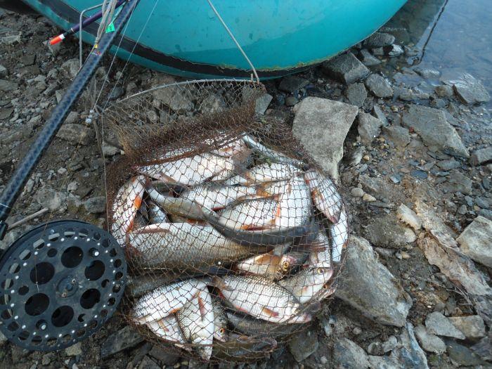 рыбалка славянский мир