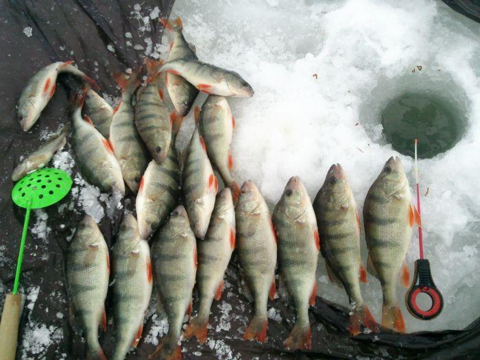 рыбалка в дюртюлях видео