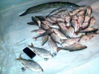 рыболовный магазин новосибирск обьгэс