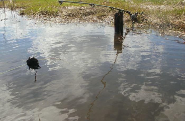 летняя рыбалка в новосибирской области вести с водоемов