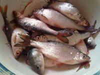 рыбалка на усть тарке