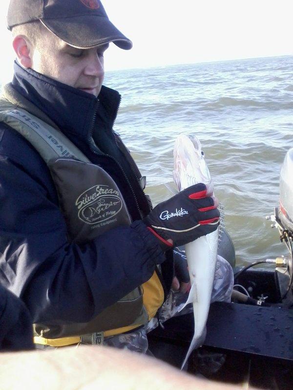 начинающему рыболову на море