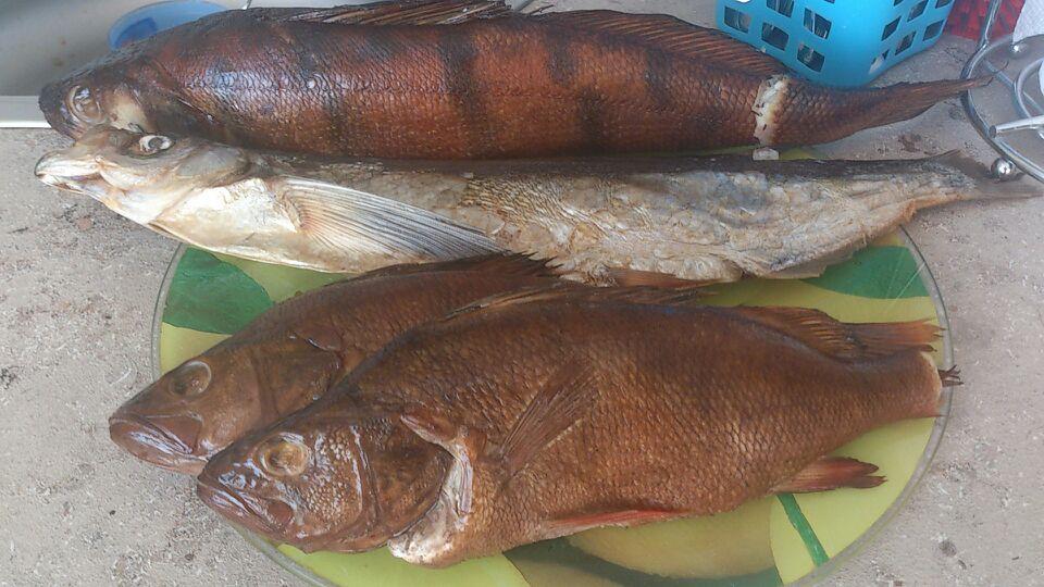 прогноз клева рыбы в качканаре на неделю