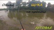 Рыбалка на щуку на Оби, на протоке Луговая.