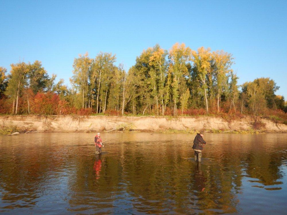 рыбалка в колпашево на оби