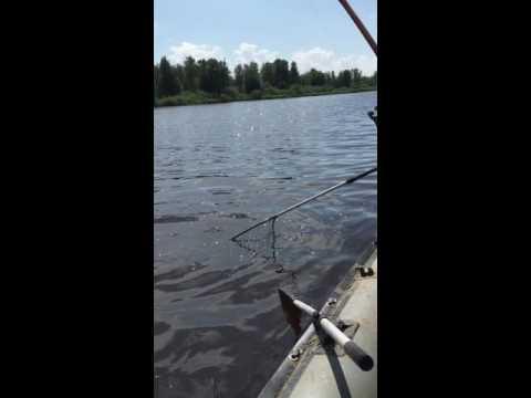 как рыбачить на острогу с лодки