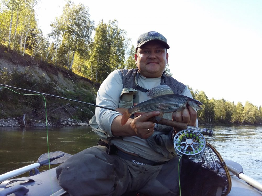мудрый пескарь рыбалка