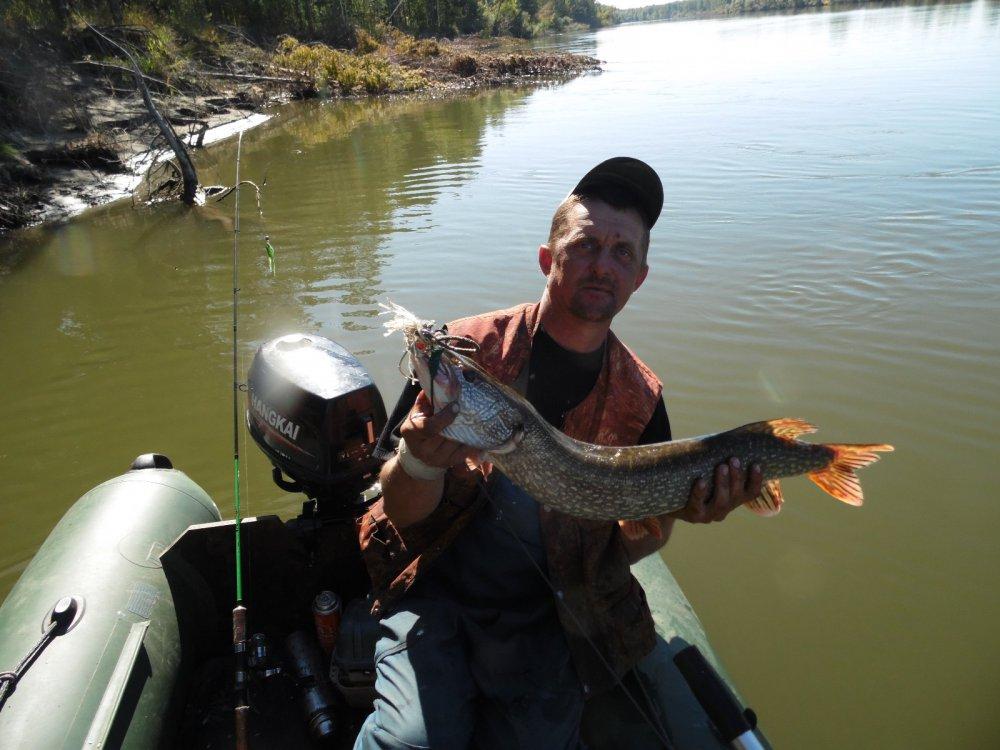 рыбалка на горной оби