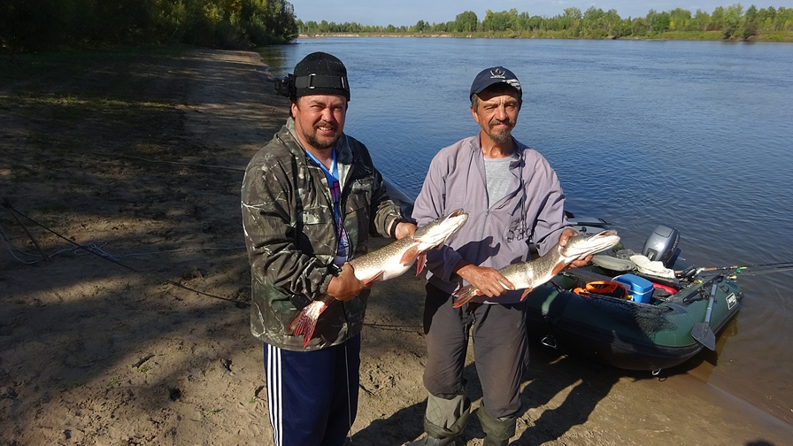 рыбалка на сети кемеровская область