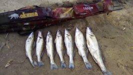 рыбалка на верхоплавку