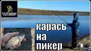 Отличная рыбалка на карася. Ловля карася на пикер осенью. (LiveFishing)