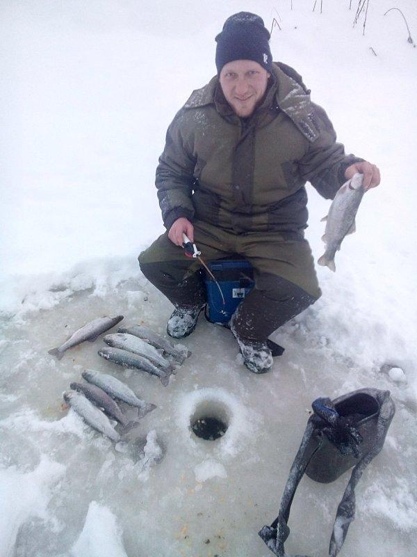 форелевая рыбалка на алтае