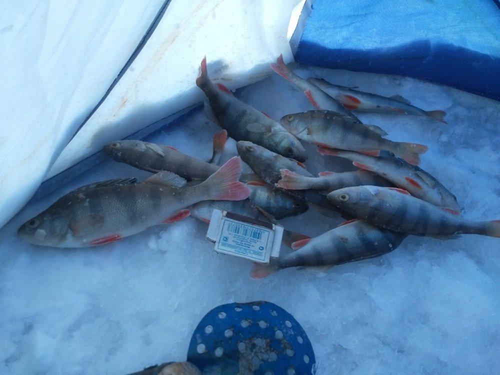 мормыш для рыбалки что это