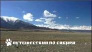 Горный Алтай, Курайская степь в начале мая...