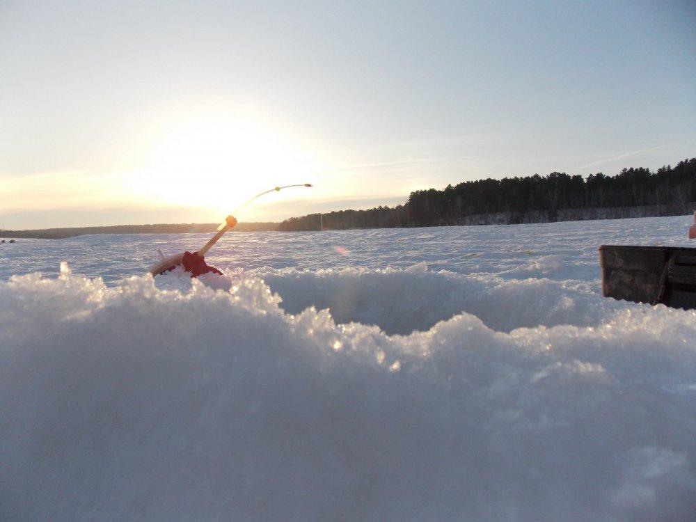 прогноз клева рыбы в городецких выселках рязанской области