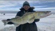 ICE FISHING.  Amazing baitfor walleye. Уникальная приманка для ловли трофейного судака