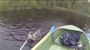 Как не надо рыбачить :)