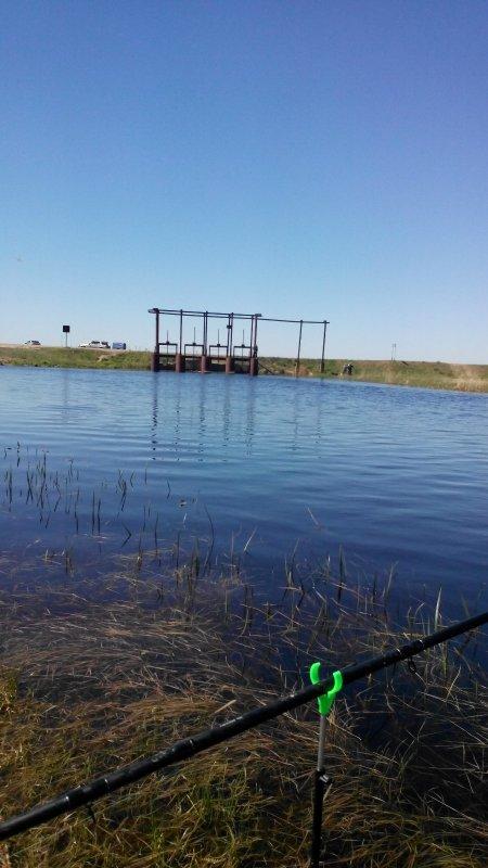 лучшие прикормки для рыбалки