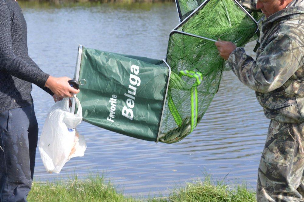 соревнования по рыбной ловле в ростовской области
