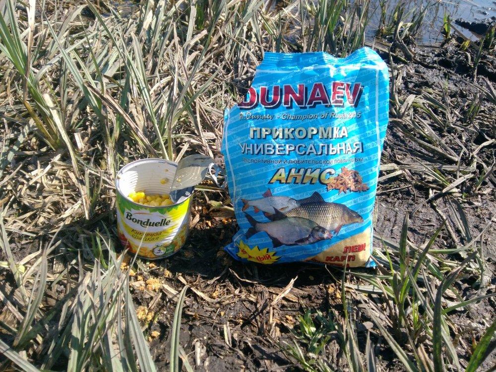 кукуруза для прикормки рыбы