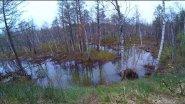 Ловля щуки на малых реках весной   Рыбалка 2017 весна