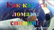 Как караси ломают спиннинг Якутия