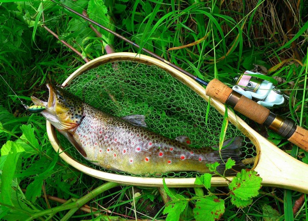 рыбалка в дании на форель