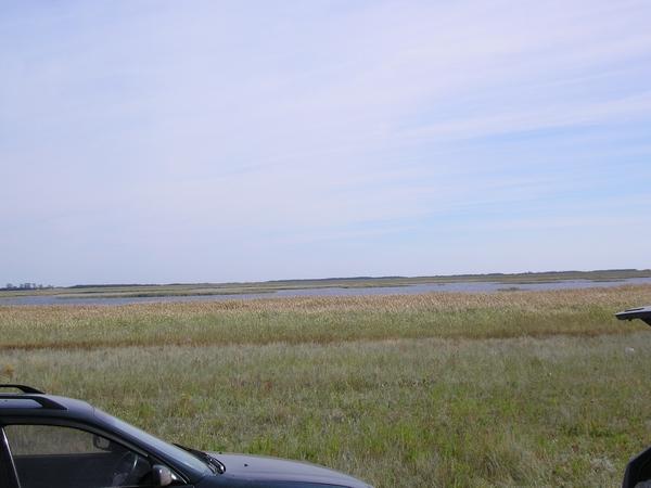 Озеро Пестренькое. Баган. Длина 2 км, ширина 400 м, глубина1 м.