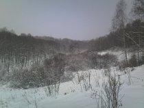 Зимний лог.