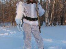 Февральский зайчишка (03.02.2008).