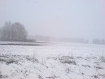 Погода шепчет. Хотя никого на снегоходах видно не было :)