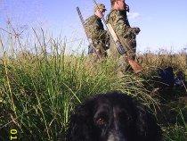 Забайкальские охотники  с собакой на утинной охоте