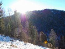 Горячее зимнее солнце