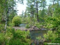 Таежная река Байкал июль 2008
