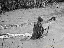 Межрегиональные межпородные состязания по водоплавающей птице 26-27 июля 2008г. в Быстроистокском районе Алтайского края.